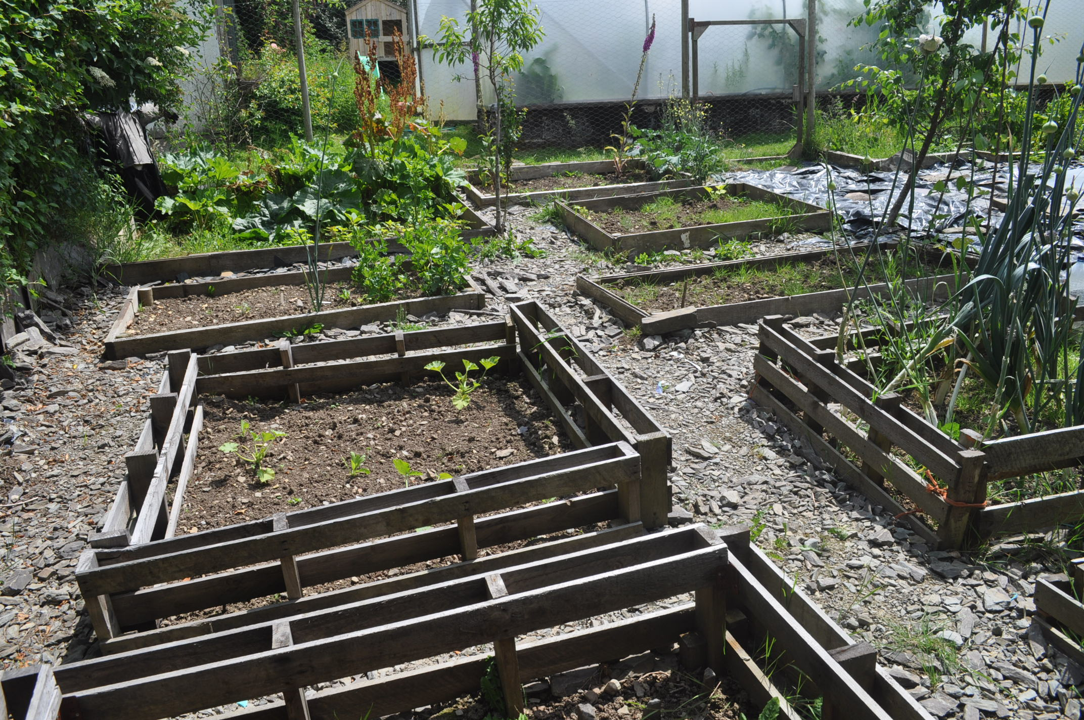 Gardening With Pallets Get Badly Behaved