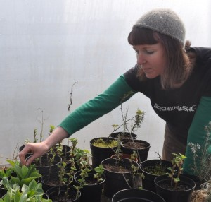 Kim with easy plants to take cuttings from (rosemary and soft fruits)... (3)